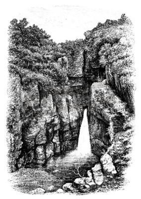 Fototapeta 19th century wodospadu niedaleko Lydford, Devon, Wielka Brytania