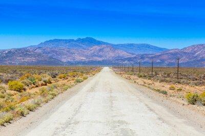 Fototapeta A brud drogi w Karoo działa obok ogrodzenia gospodarskich.
