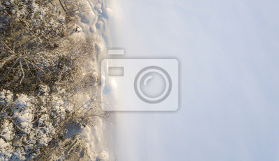 Fototapeta Aerial view of shoreline of frozen lake with snowy trees