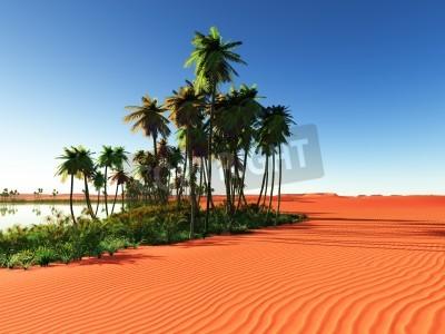 Fototapeta Afrykańska oaza