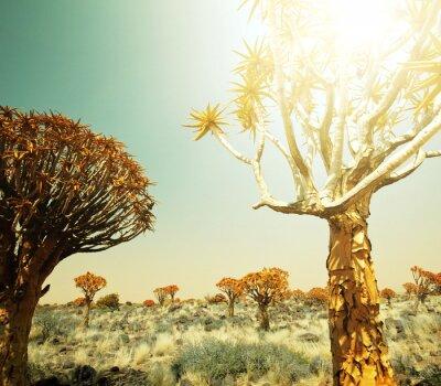 Fototapeta Afrykańskie krajobrazy