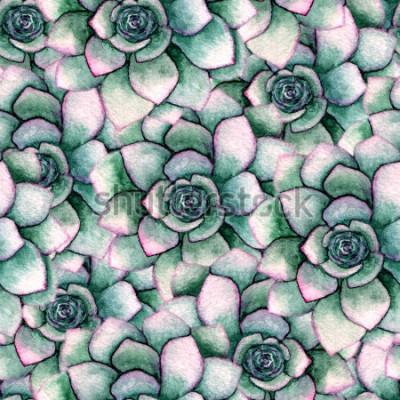 Fototapeta Akwarela bezszwowe botaniczny wzór z sukulenty