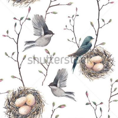 Fototapeta Akwarela bezszwowe wzór z gałązek gniazdo, ptaki i drzewa. Ręka wektor wiosna tło. Rocznik tapeta z dymówką i jajkami