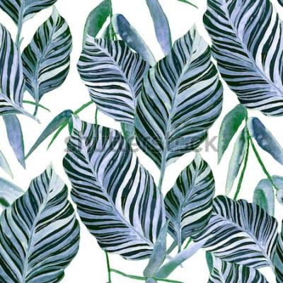 Fototapeta Akwarela bezszwowe wzór z tropikalnych liści: palmy, monstera, marakuja. Piękny nadruk z ręcznie rysowanymi egzotycznymi roślinami. Projekt botaniczny stroje kąpielowe.