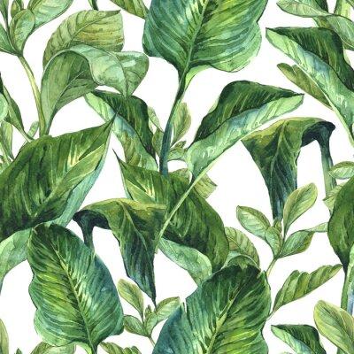 Fototapeta Akwarela Jednolite tło z tropikalnych liści