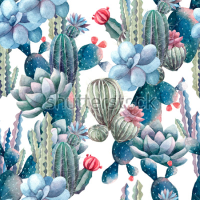 Fototapeta akwarela kaktus wzór
