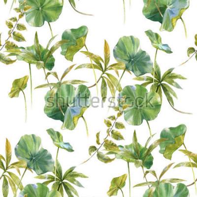 Fototapeta Akwareli ilustracja liść, bezszwowy wzór na białym tle