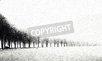 Fototapeta Aleja w zimie jazdy samochodem wzdłuż tej drogi zdjęcie ist malownicze wyobcowani