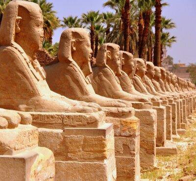 Fototapeta Amon Tempel von Luxor