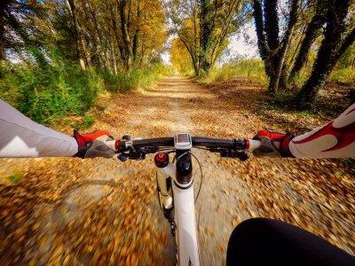Fototapeta andando w bicicletta w Autunno w Kampanii. POV originalmpoin widzenia