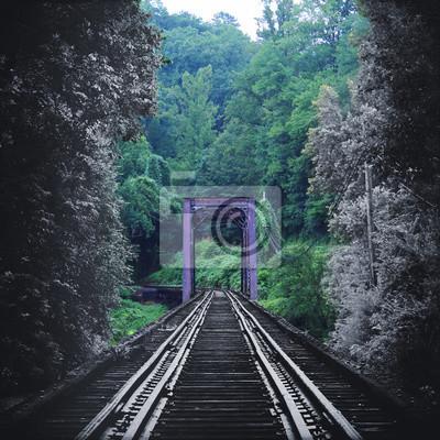 Artystyczna Przyroda Fotografia Vintage Train Tracks Bridge Fading