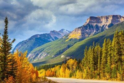Fototapeta Autostrada w Banff