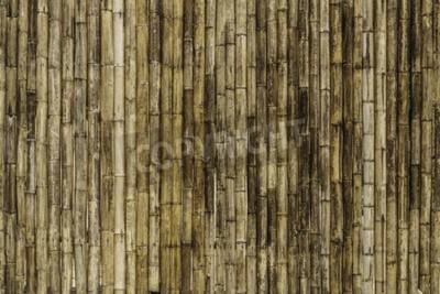 Fototapeta Bambusowe ogrodzenia tle