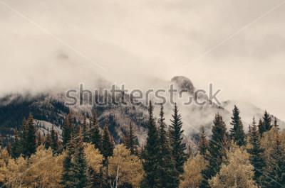 Fototapeta Banff park narodowy mgłowe góry i las w Canada.