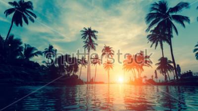 Fototapeta Beautiful tropical beach with palm trees silhouettes at dusk.