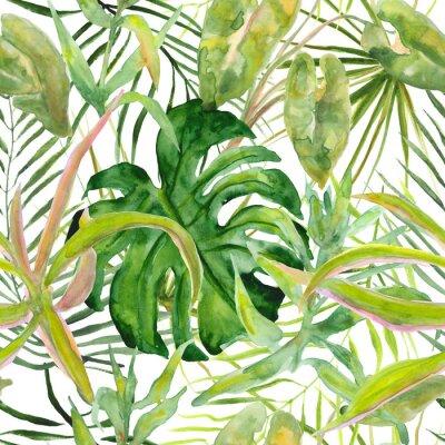 Fototapeta Bezszwowe tropikalny wzór liścia