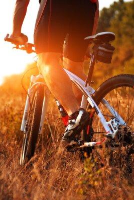 Fototapeta Bliska widok z tyłu człowieka spining pedałów rowerowych