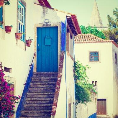 Fototapeta Blue Door