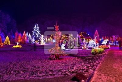 Fototapeta Boże Narodzenie światła w parku miejskim - kolory, fantazja