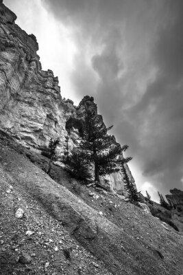Fototapeta Bryce Canyon Fotografia czarno-biała