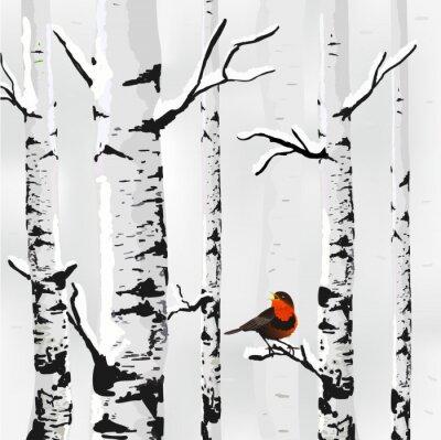 Fototapeta Brzoza w śniegu, zima w wektorze karty