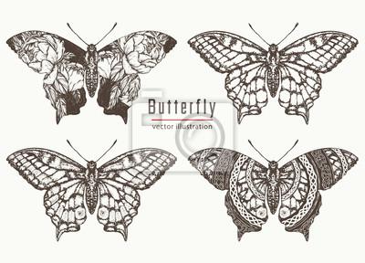 Butterfly Wyciągnąć Rękę Kolekcji Realistyczny Tatuaż Motyl