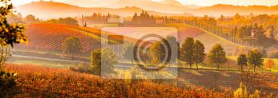 Fototapeta Castelvetro di Modena, winnice jesienią, Włoszech