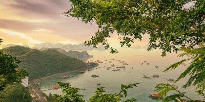 Fototapeta Cat Ba Island kolorowe łodzie