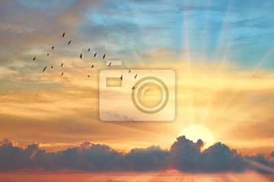 Fototapeta Chmura wieczornego nieba o zachodzie słońca