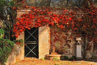 Fototapeta cichy zakątek jesiennej ogród z liści