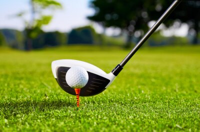 Fototapeta Closeup of golfball on tee for first stroke