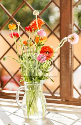 Fototapeta Colorful persian buttercup flowers (ranunculus)