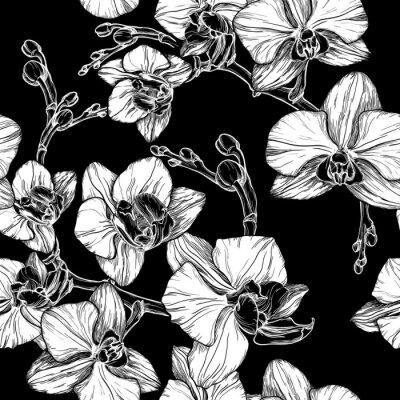 Fototapeta czarno-biały bez szwu deseniu z kwiatu orchidei strony rysunku