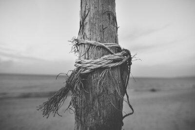 Fototapeta Czarno-biały zamknąć z bieguna na plaży z liny skręcone