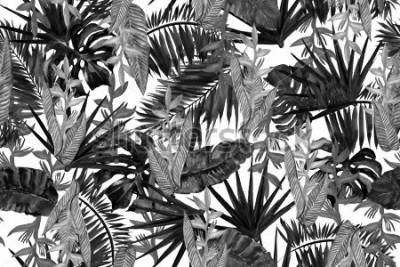 Fototapeta Czarny i biały tropikalny tło bezszwowy wzór. Akwarela monochromatyczny styl.