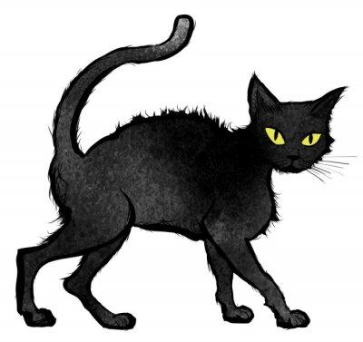 Fototapeta Czarny kot spaceru i patrząc na kamery