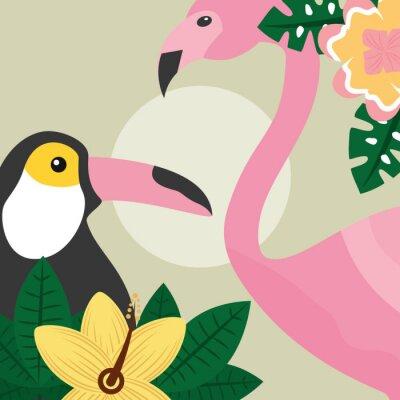 Fototapeta czas letni tropikalnych ptaków Tukan i ilustracji wektorowych flamingo