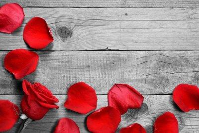 Fototapeta Czerwona róża i płatków na czarno-białym tle drewnianych