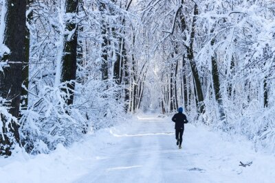 Fototapeta Człowiek działa w lesie w zimie