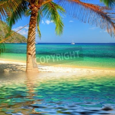 Fototapeta Czyste tropiki