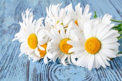 Fototapeta Daisy Rumianek kwiaty na drewnianym stole ogrodowym