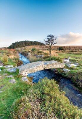 Fototapeta Dartmoor National Park