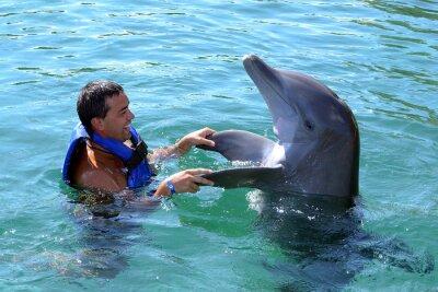 Fototapeta Delfin pływać z człowiekiem