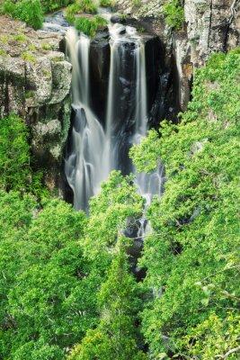 Fototapeta Denham Falls w Beechmont, Queensland, Australia. Położony w Denham Reserve.