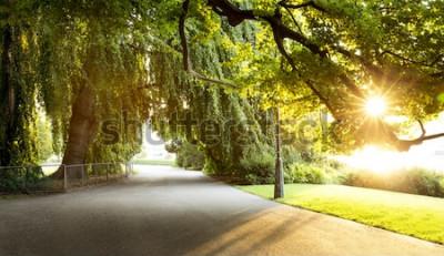 Fototapeta Deptak w pięknym parku miejskim