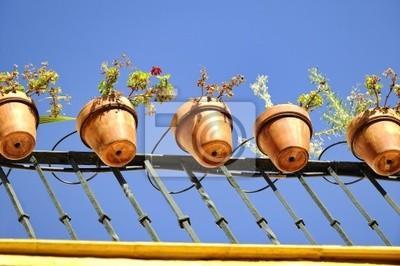 Fototapeta Doniczki Wiszące Na Balkonie Sewilla Hiszpania
