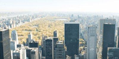 Fototapeta Drapacze chmur w Nowym Jorku i Central Park z góry