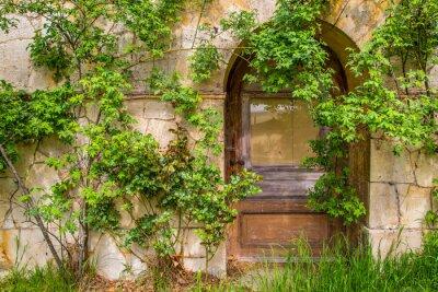 Fototapeta Drewniane drzwi