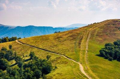 Fototapeta Droga przez trawiasta ?? ki na grzbiet górski