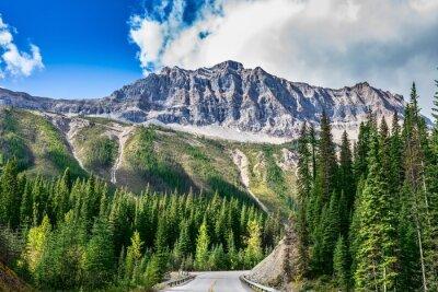Fototapeta Droga Yoho National Park w Kanadzie